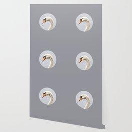 Elegance: Swan Wallpaper