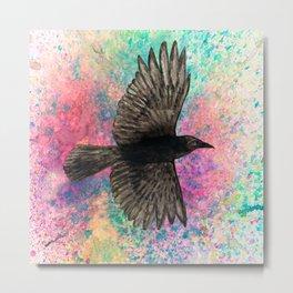Flying crow Metal Print