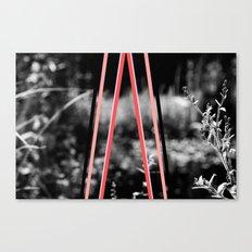 garden stripes Canvas Print