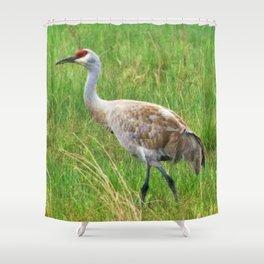 Bird Series: Sandhill Crane Shower Curtain