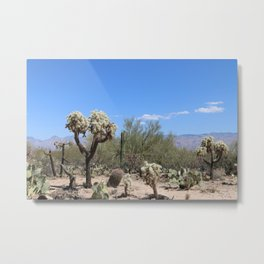 The Beauty Of The Desert Metal Print