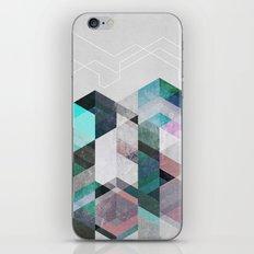 Nordic Combination 23 iPhone & iPod Skin