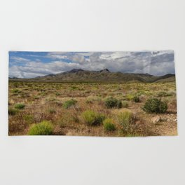 Painted_Desert 0211 - Southwest USA Beach Towel