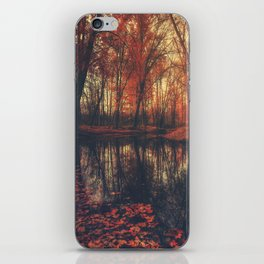 Where are you? Autumn Fall - Autumnal forest iPhone Skin