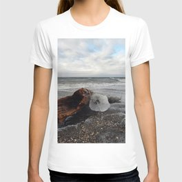 Driftwood And Ice in Spring T-shirt