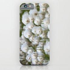 Cotton grass iPhone 6s Slim Case