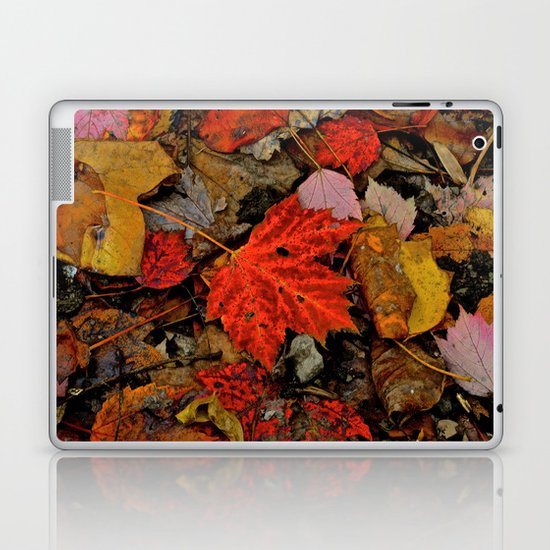Nature's Palette Laptop & iPad Skin