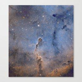 Elephant trunk nebula Canvas Print