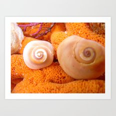 Breasts of the coral reef Art Print