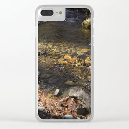 Little Stream II Clear iPhone Case
