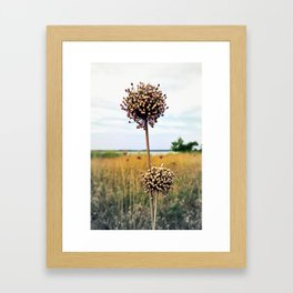 "Yorktown ""Onion"" Framed Art Print"