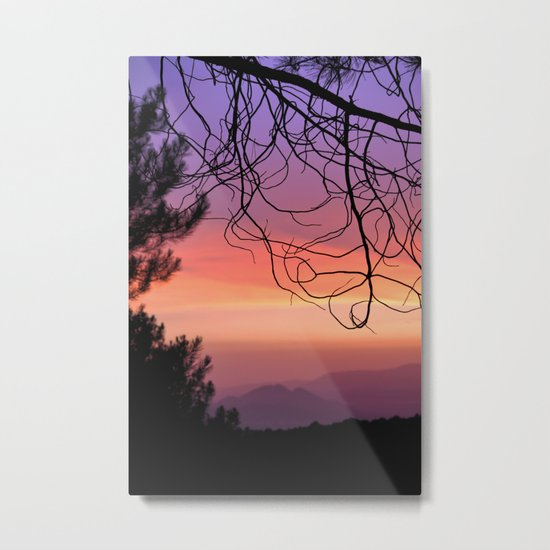 Purple sunset. At the woods Metal Print