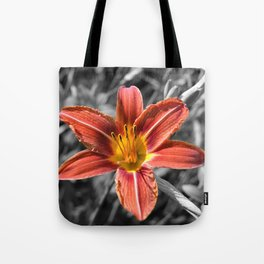Orange-yellow Hemerocallis Tote Bag