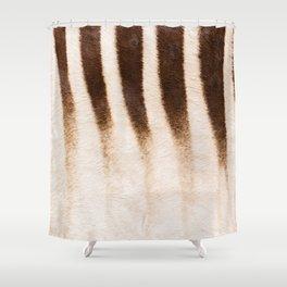 Zebra - Africa - #society6 #buyart #decor Shower Curtain