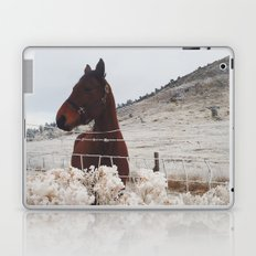 Snowy Horse Laptop & iPad Skin