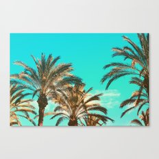 Tropical Palm Trees  - Vintage Turquoise Sky Canvas Print
