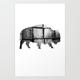 Buffalo (The Living Things Series)  Art Print