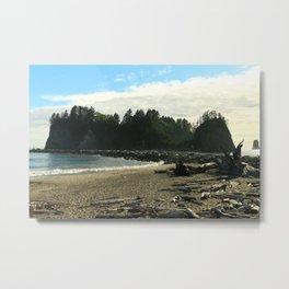 Driftwood on La Push Beach Metal Print