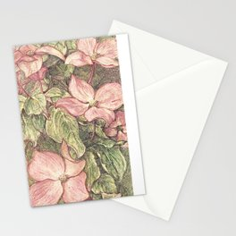 Satomi Dogwood, Pencil Sketch II Stationery Cards