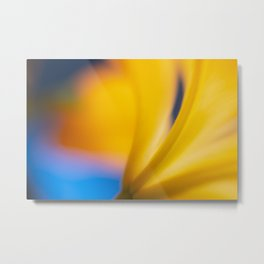 Sunshine Lily Metal Print