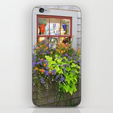Nantucket Window box iPhone & iPod Skin