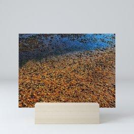 Rocks on the beach at Sandy Hook, New Jersey Mini Art Print
