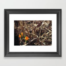 Goodbye Brown Yellow Is In Town Framed Art Print