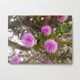 Purple Blossom Metal Print