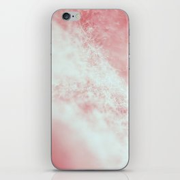 Lint iPhone Skin