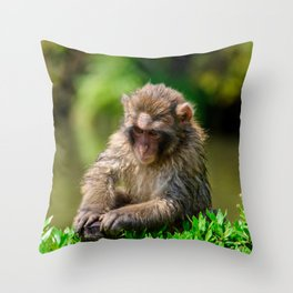 Snow Monkey Throw Pillow
