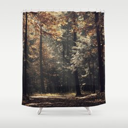 Autumn light and rays - horizontal Shower Curtain