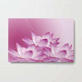 Lotos Flowers Pink Metal Print