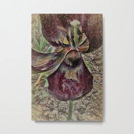 Tulip Art Metal Print
