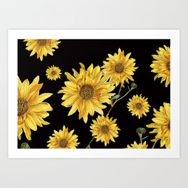 Sunflower Pattern 2 Art Print