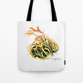 Tillandsia Xerographica Air Plant Watercolor Tote Bag
