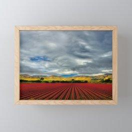 Marigold Field Framed Mini Art Print