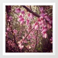 Dreamy Pink Buds Art Print