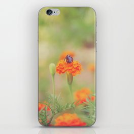 Summer Bee iPhone Skin