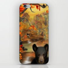 Little Fall Wonders iPhone & iPod Skin