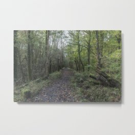 The Old Railway Line 2 Metal Print