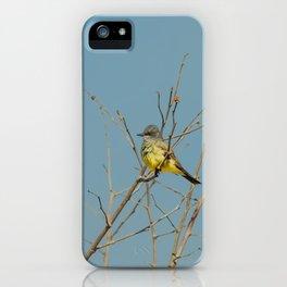 Bird - Western Kingbird - Study 1 iPhone Case