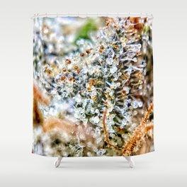 Top Shelf Diamond OG Strain Buds Calyxes Amber Trichomes Close Up View Shower Curtain