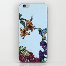 Hummingbird Garden Paper-cut  iPhone & iPod Skin