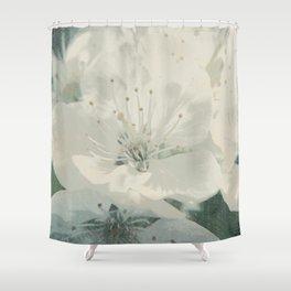 Cherry Blossom Shower Curtain