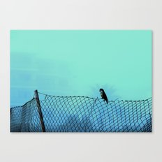 thoughtful parrot  Canvas Print