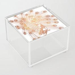 Steampunk Robot Peacock Acrylic Box