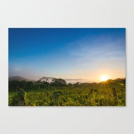 Sunrise over the fields Canvas Print