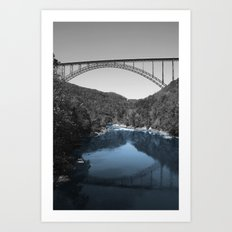 New River Teal? Art Print