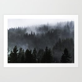 A Walk in the Woods - 23/365 Art Print