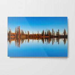 Tree reflections on water Metal Print